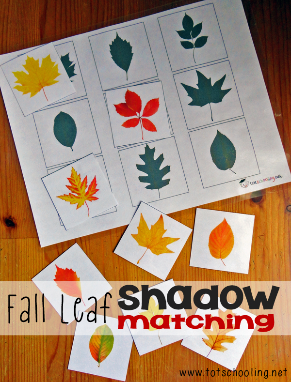 fall leaf shadow matching totschooling toddler preschool kindergarten educational printables. Black Bedroom Furniture Sets. Home Design Ideas