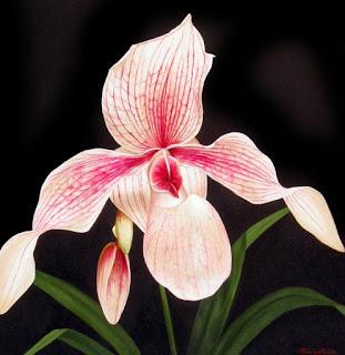 bodegones-con-flores-grandes
