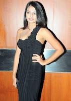 Nikitha, Narayan, -, Latest, Spicy, Pics