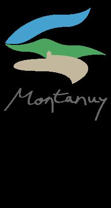 Web turísitca municipio de Montanuy