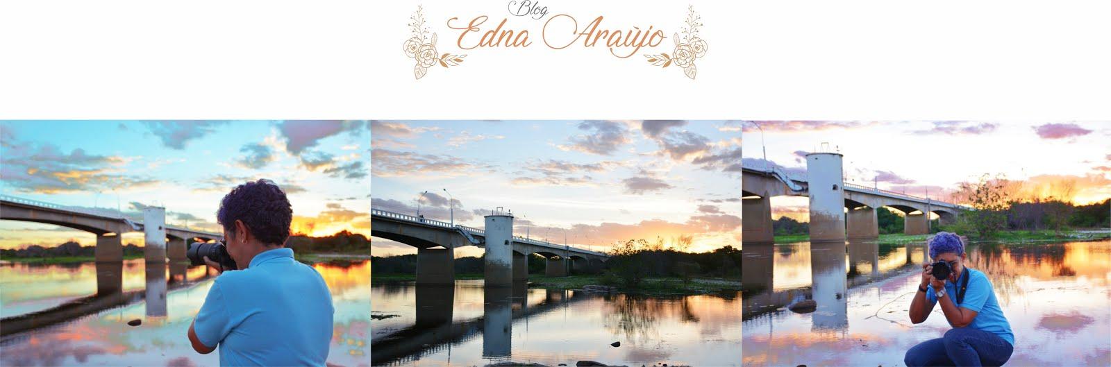 Blog Edna Araújo