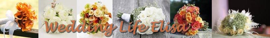 Wedding Life Elisa