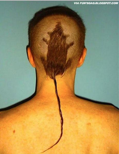 My new rat hair cut