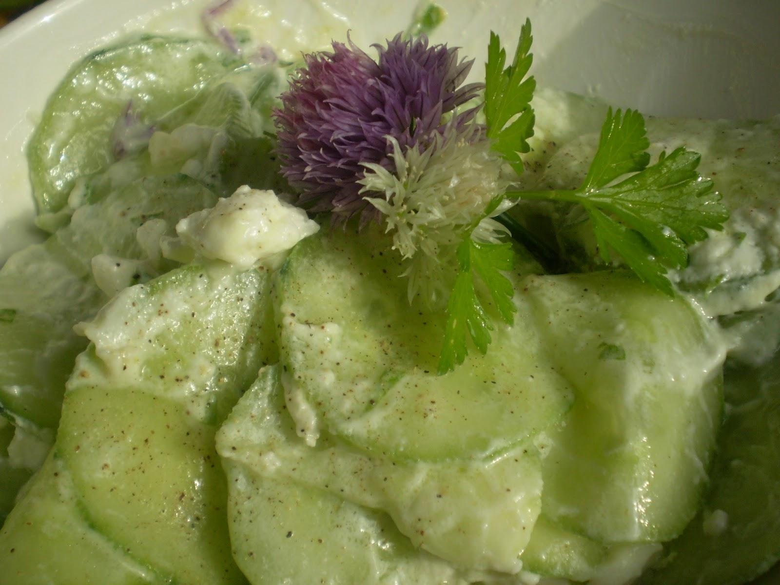 Salade de concombre au yaourt et fleur de ciboulette