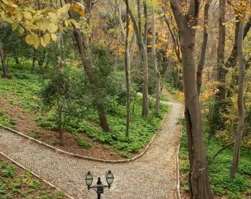 Yıldız Park Besiktas ~ ISTANBULS