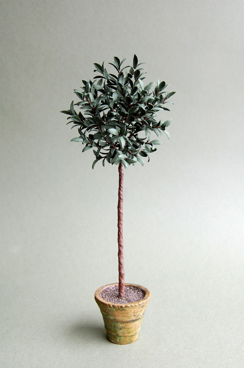 The miniature garden ornamental trees for Tiny ornamental trees