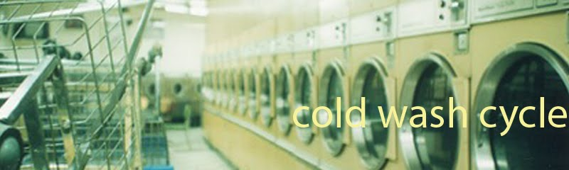 cold wash cycle