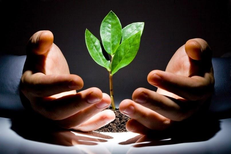 ekologicheskaja bezopasnostj