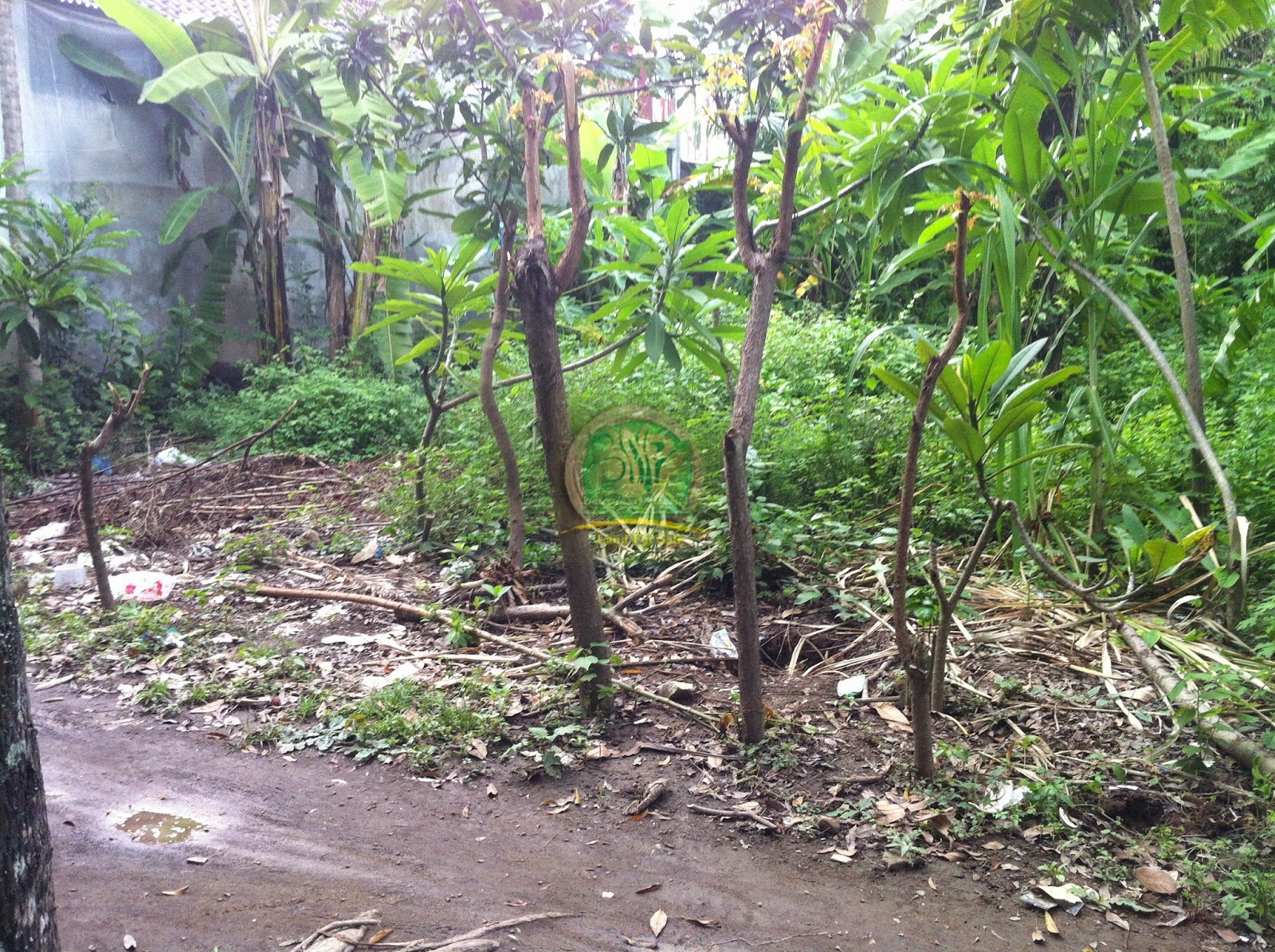 Tanah Denpasar area Sumerta Bali