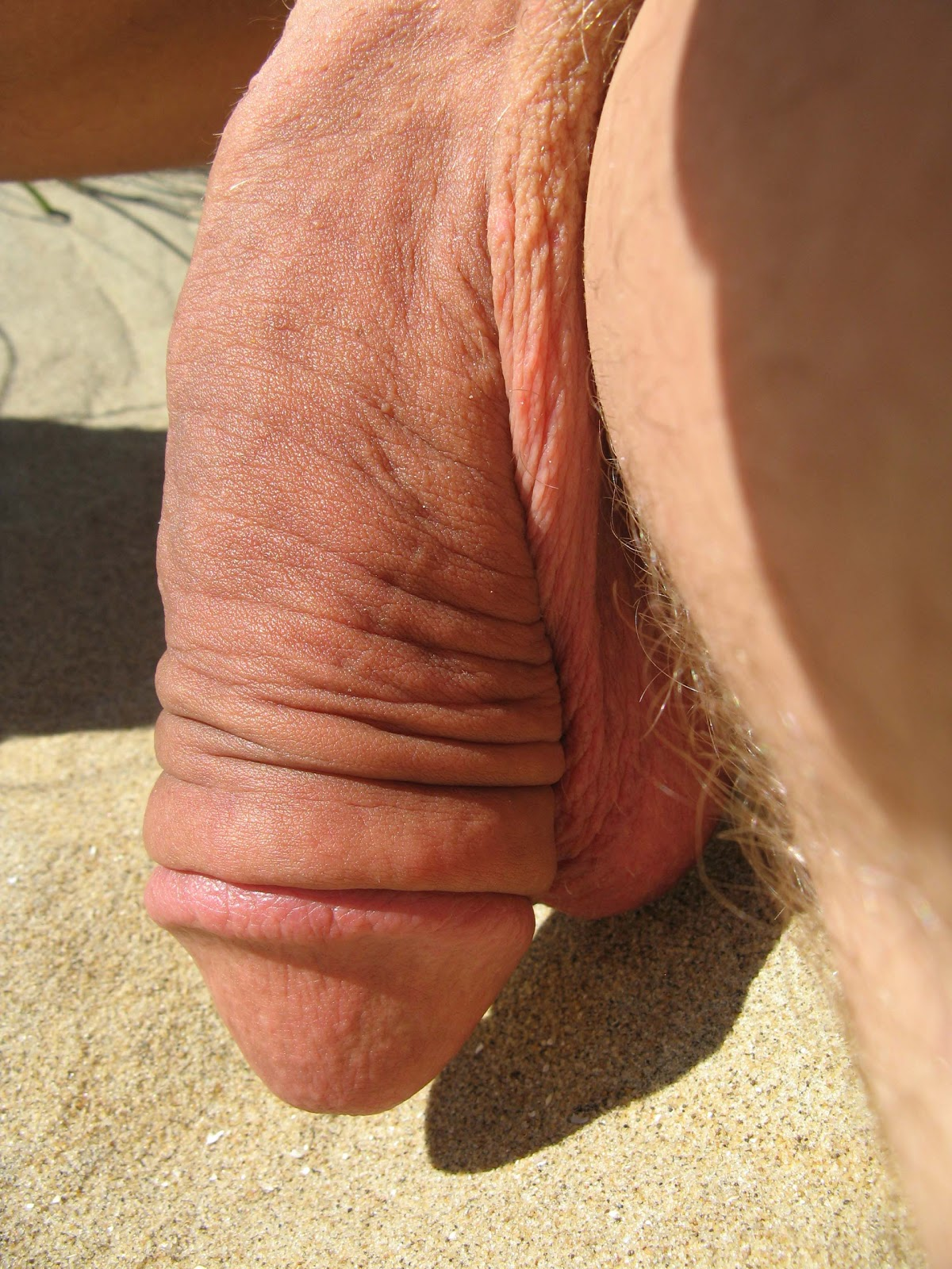 pic biggest soft dick ever