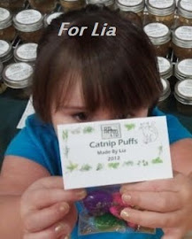 To Donate a Catnip Puff Toy Made By Lia