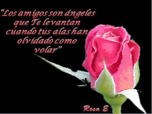 De Rosa E.