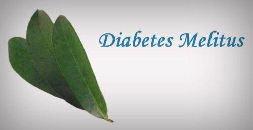 Daun sirsak untuk diabetes melitus