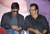 Allu Arjun's Julayi Movie Success Meet Photos-thumbnail-10