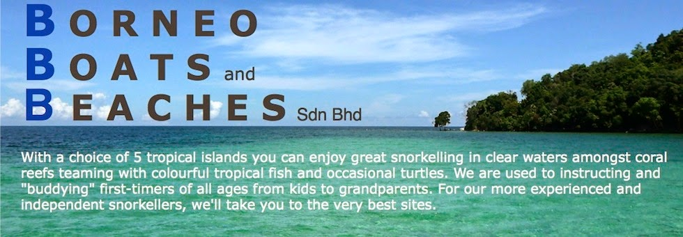 - SNORKELING in SABAH - Snorkeling packages from Kota Kinabalu with 'Borneo Boats and Beaches'