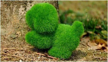 Boneka rumput dengan bentuk anjing.