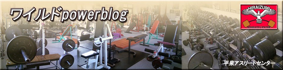 ワイルドpowerblog