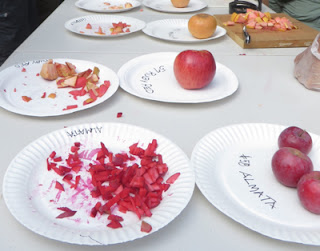 More plates of apples
