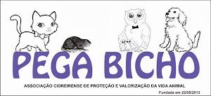 PEGA BICHO