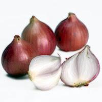 Tanaman Obat Alami untuk Mengobati Penyakit Bisul,Buah Bawang Merah dan Putih