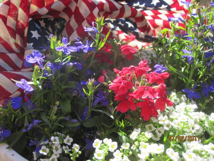 MzTeachuh: Summer Activity: Red, White and Blue Flowers for Memorial Day