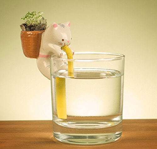 04-Cat-Chuppon-Self-Watering-Animal-Planter-www-designstack-co