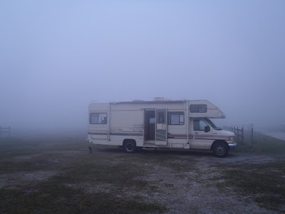 fog at three lakes wildlife management in florida by http://DearMissMermaid.com copyright by Dear Miss Mermaid