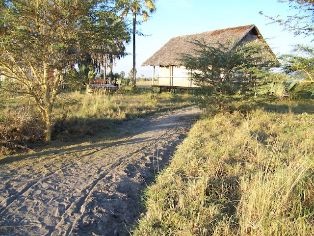 Maramboi Tented camp Lake Manyara