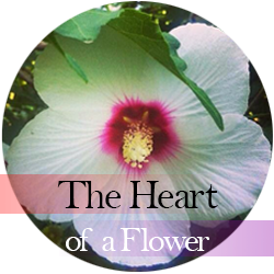 The Heart of a Flower