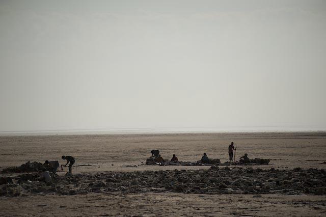 Photograph of salt miners in Berehale, Afar, Ethiopia by Ethiopian photographer Michael Tsegaye