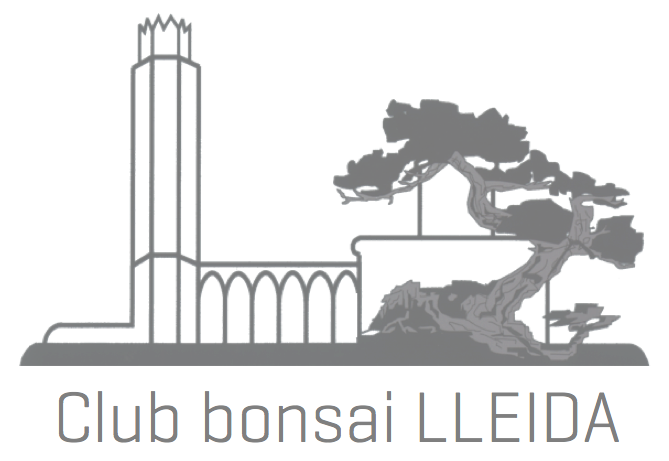 Logo Club Bonsai Lleida