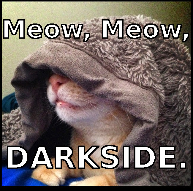 Darkside cat meme