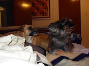 Nelly e Lillo,lindas