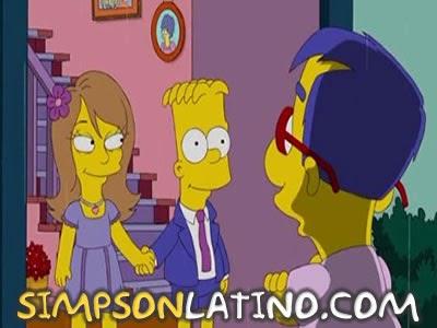 Los Simpson 20x17