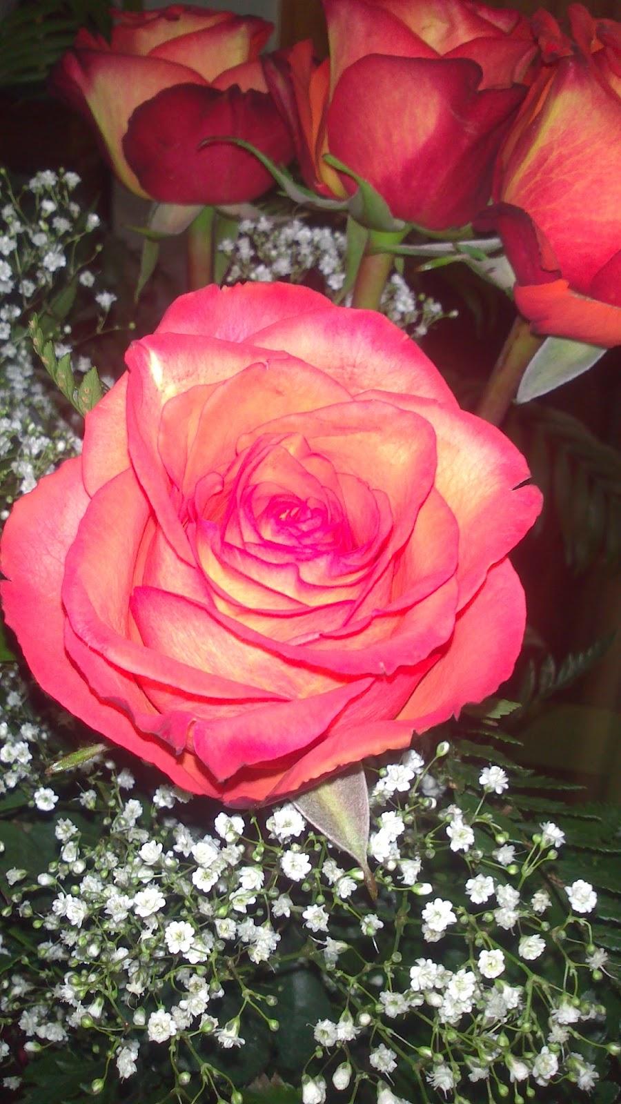 Los 50 ramos de novia más elegantes para 2015 Flores