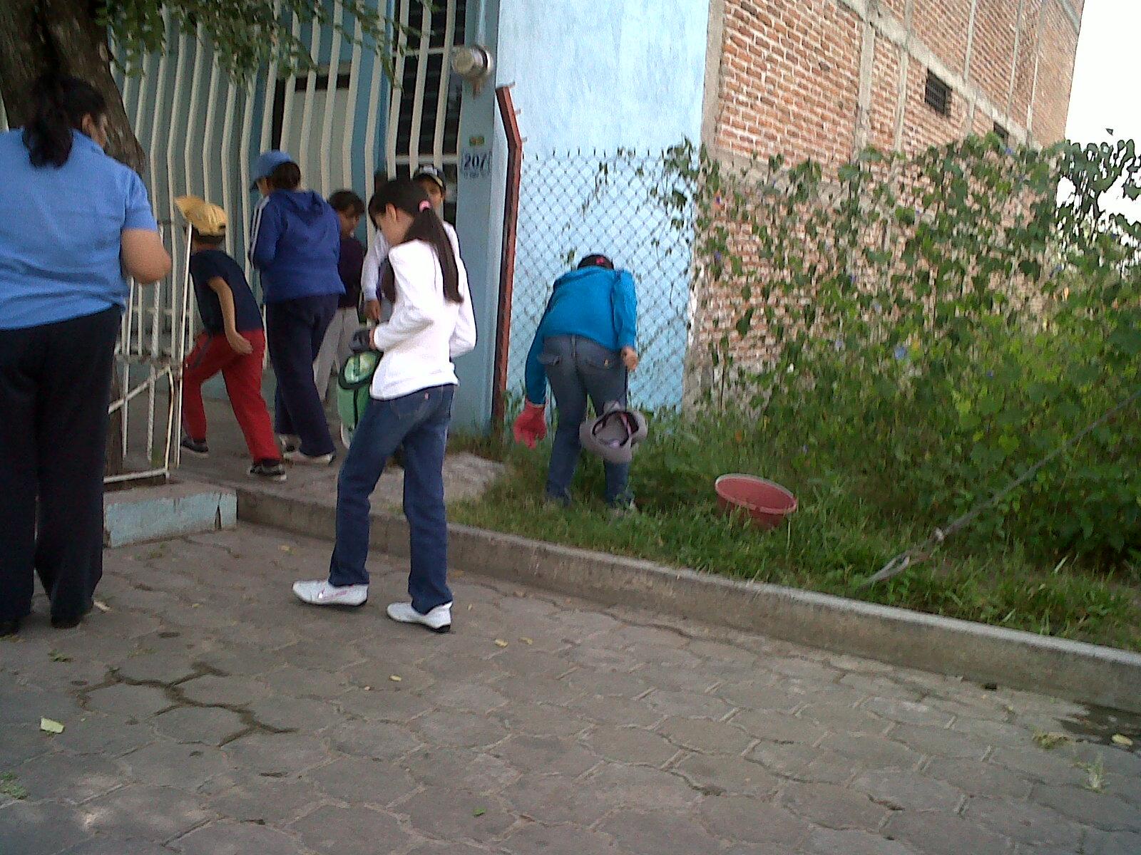 wall mart fundacion mexico: