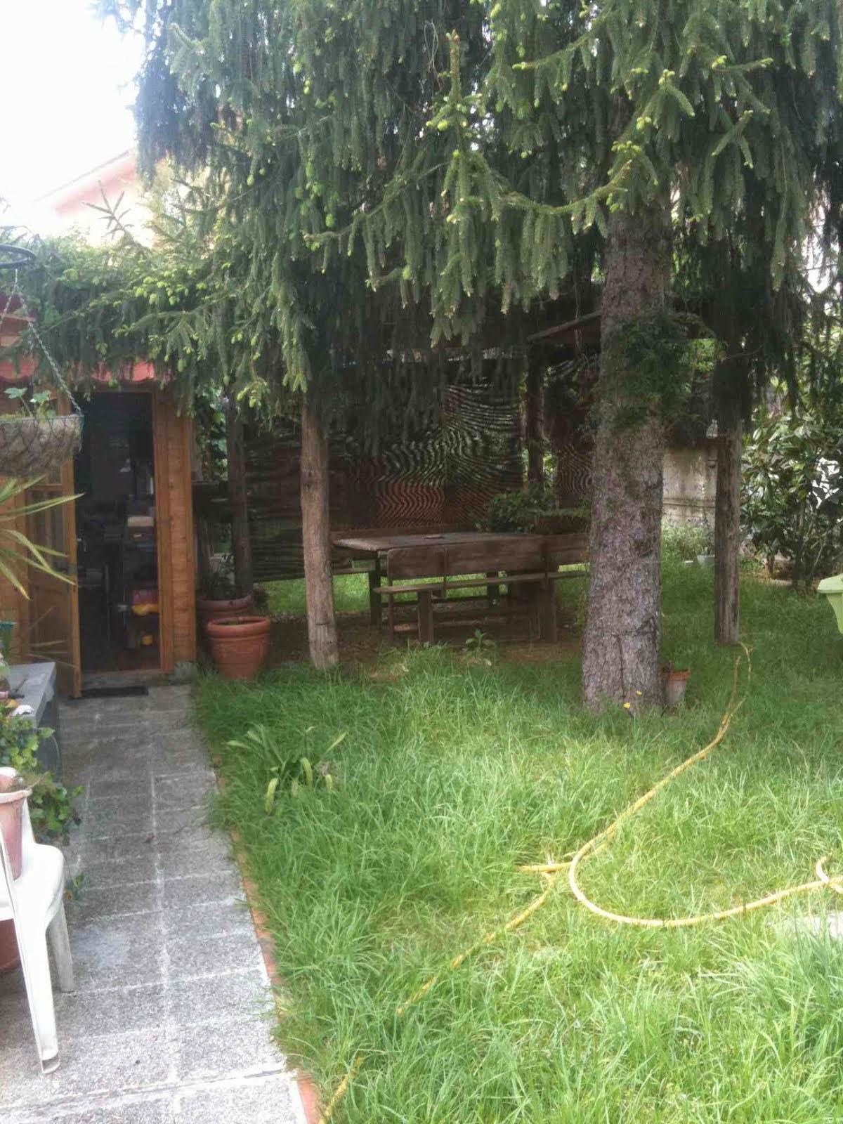 jardi entrant per l'estudi
