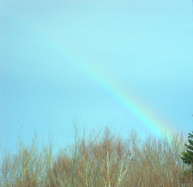 [ rainbow ]