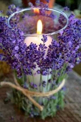Luz, Paz y Amor en tu Camino