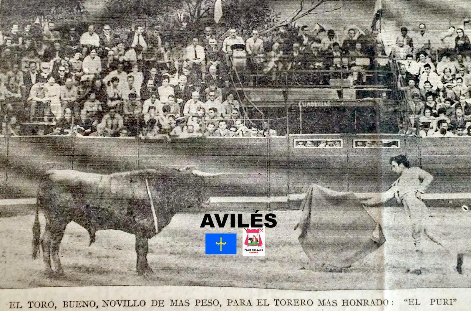AVILES ASTURIAS TOROS