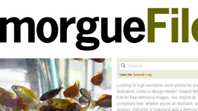5 Morguefile 10 of the Most Wanted Free Stock Image Resource Websites