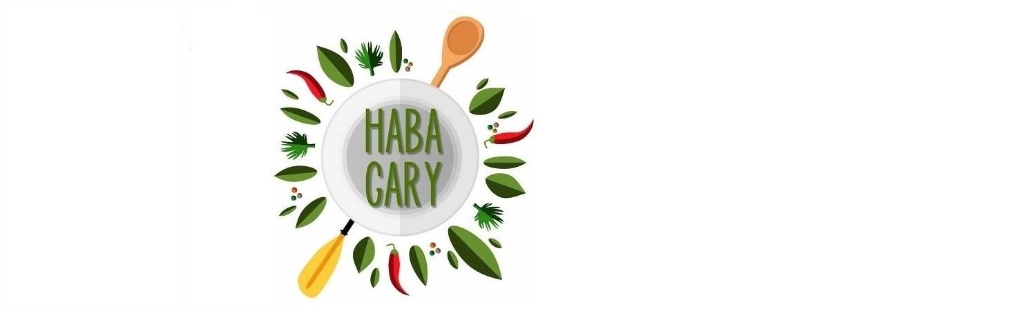 HabaGary
