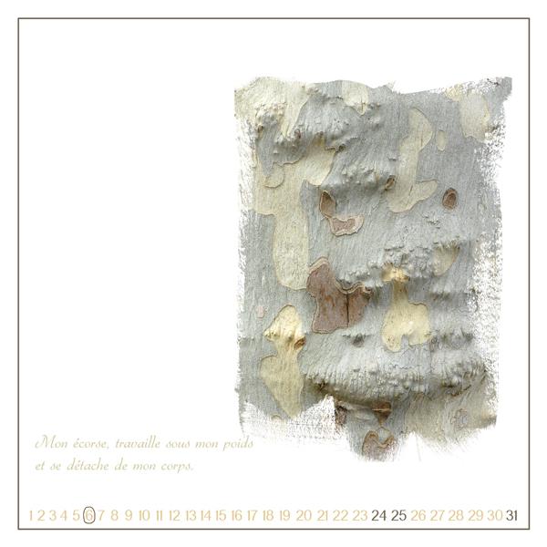 Récapitulatif CalendrierAvent+Blanc+J-21