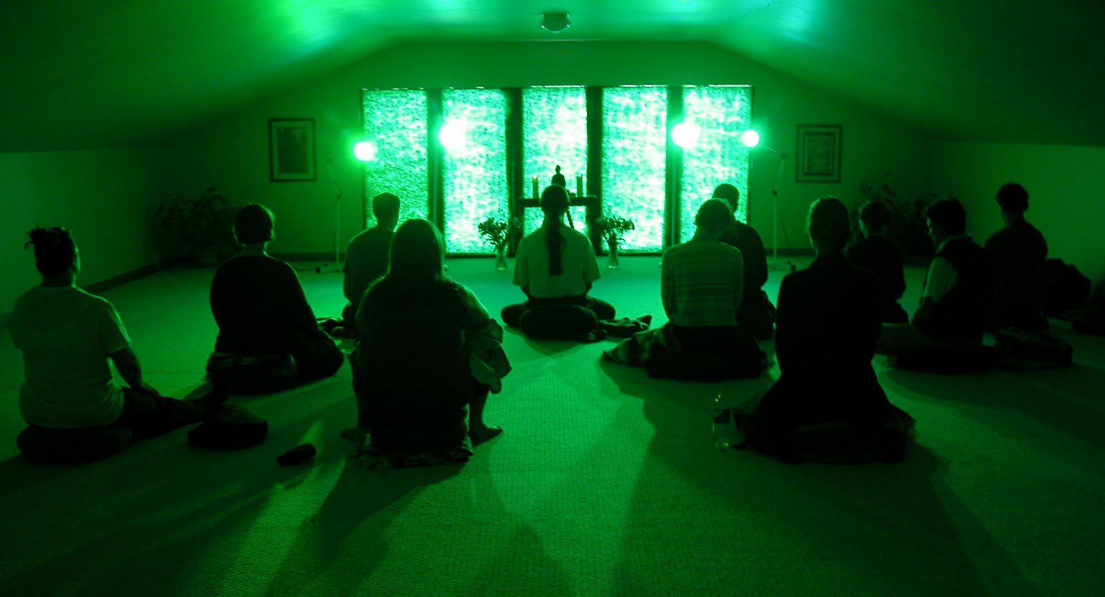 The PeaceWeavers Have Been Using Green Light Therapy For Two Decades With  Great Results. We Use It Not Only For Healing Ourselves, Our Kids, And Our  Pets, ... Photo Gallery