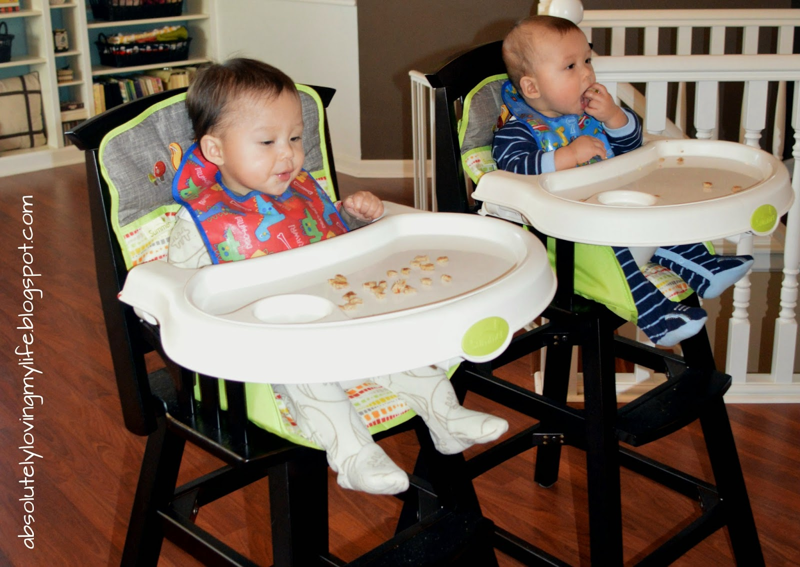 Loving Life: Baby Equipment for Twins