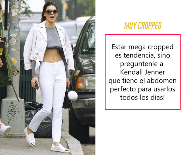 kendall jenner cropped top