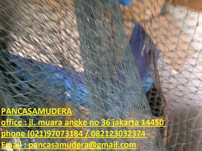 http://pancasamudera-safetynet.blogspot.com/