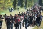 """Atenţie maximă: autorităţile române aduc şi ascund """"refugiaţi"""" în toată România!"""