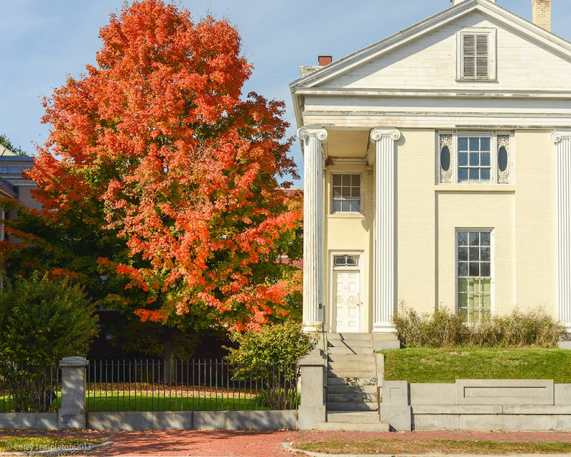 Corey templeton photography foliage at the museum for Portland maine museum of art