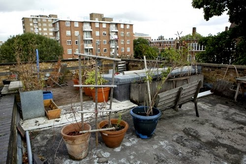 09-1st-Floor-Studio-Mews-Apartment-Camden-London-UK-Skylight-Roof-Terrace-Garden